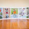 Australian Bird Gift Cards
