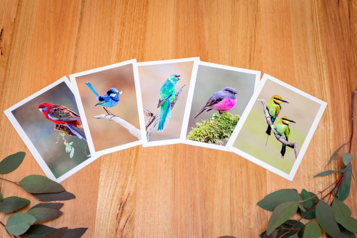 Australian Bird Gift Card