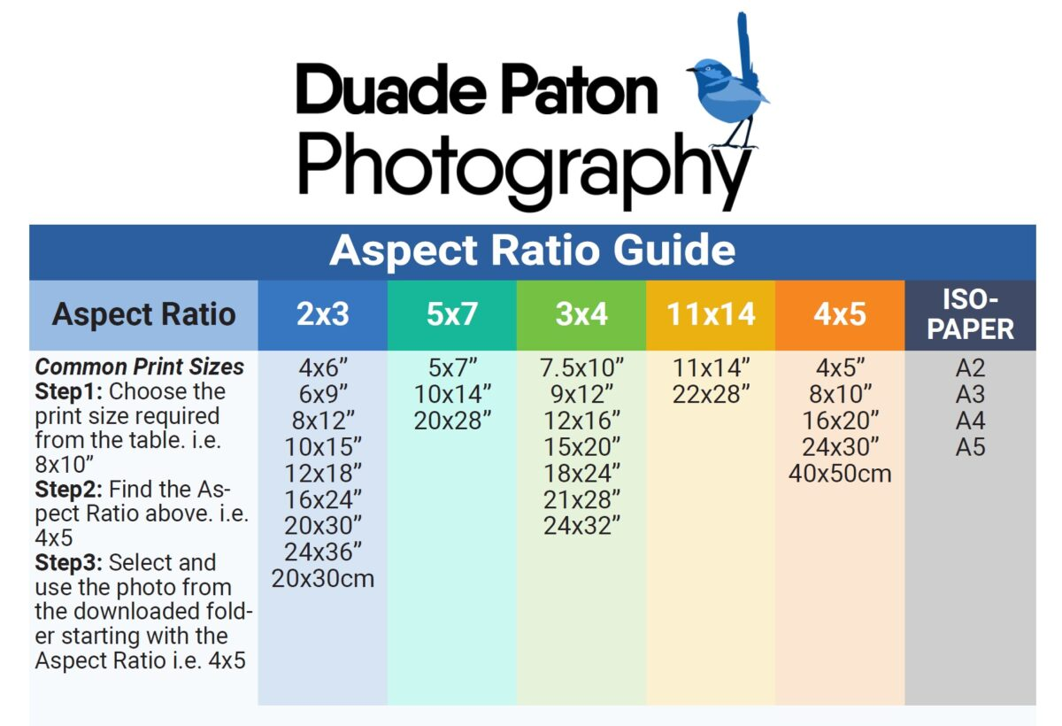 Duade Paton Photography Printing Sizes