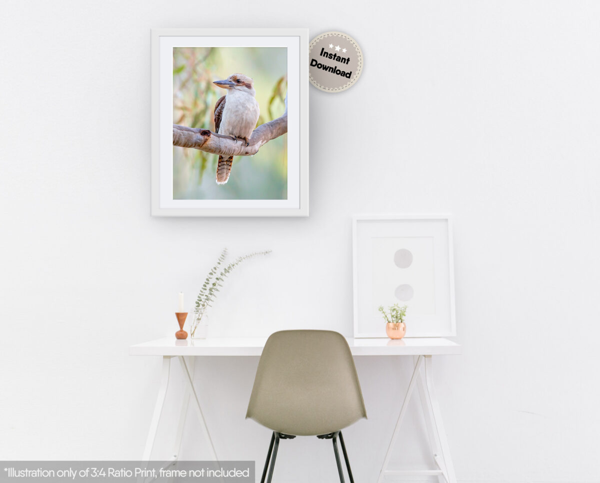 Laughing Kookaburra Digital Art File