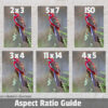Crimson Rosella Ratio Guide